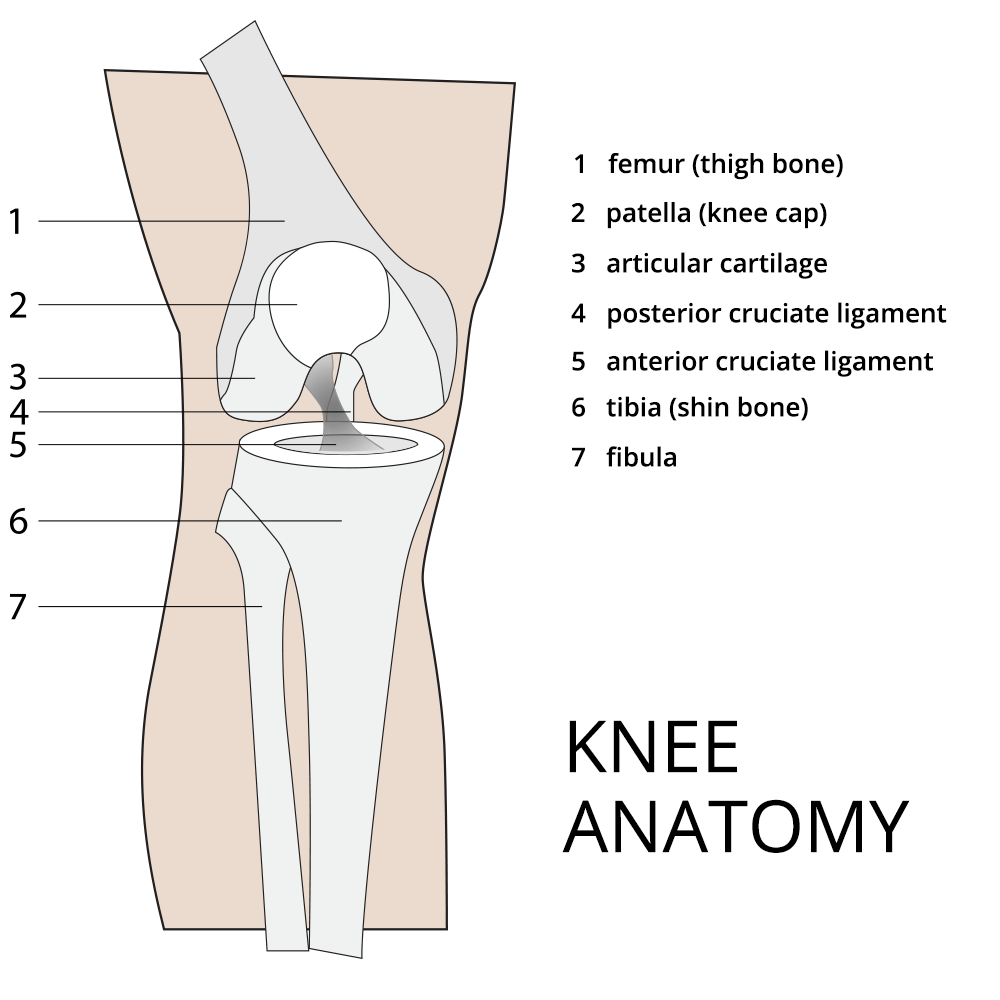 Knee Preservation - Baltimore, MD | Towson Orthopaedics
